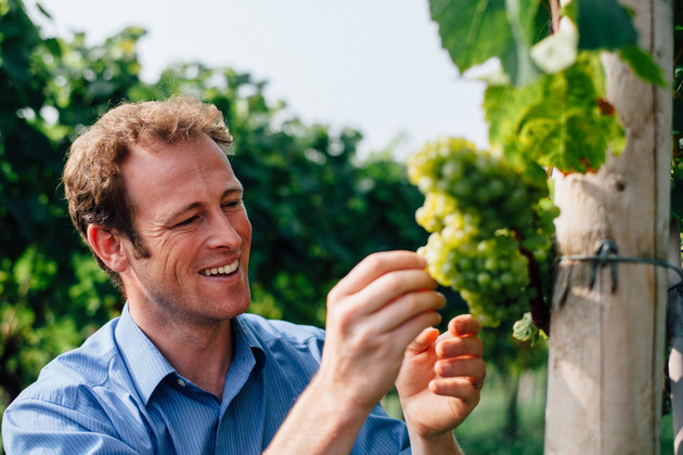 Chris Chinn is looking for a distributor for his English wines
