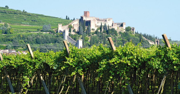 Soave's top sites upgraded to crus - Harpers Wine Spirit Trade News
